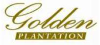 PT GOLDEN PLANTATION TBK