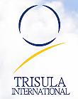 PT TRISULA INTERNATIONAL TBK